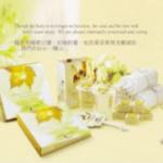 NV-Honour-Caring-Detail-e1458051685998-150x150