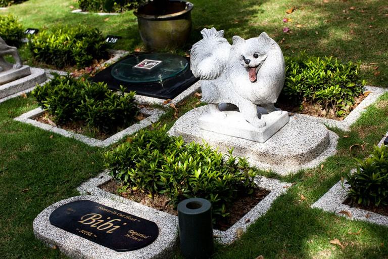 product-pet-burial plot